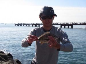 釣り公園の対岸で。