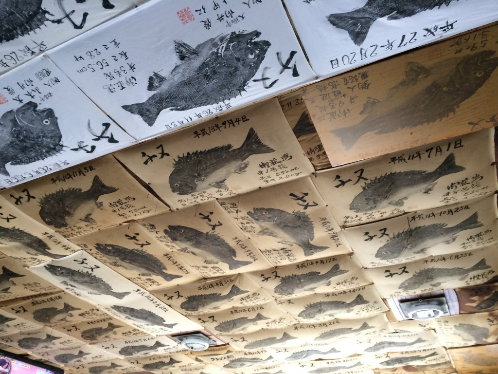 天井まで年無しチヌでいっぱいだー