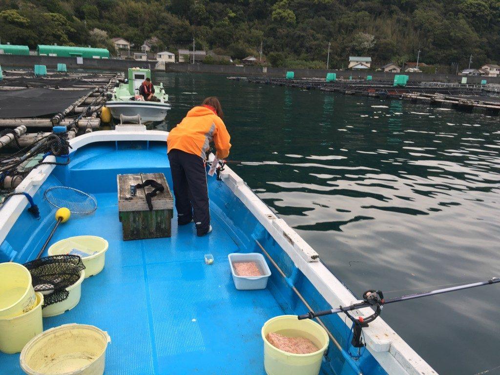 オキアミを撒き餌・挿し餌に。釣りスタート。