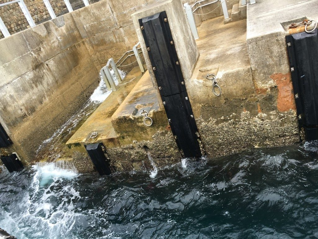 ドルフィン桟橋に接岸。