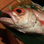 【ノドグロ】釣り人が食べて一番美味しいと思った魚【錦織選手】