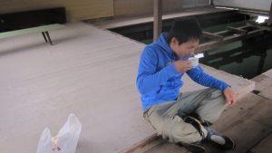 【化け物】浦ノ内・釣り筏 幸丸さん(須崎)で最高のイカダ釣り。パート2【爆釣】